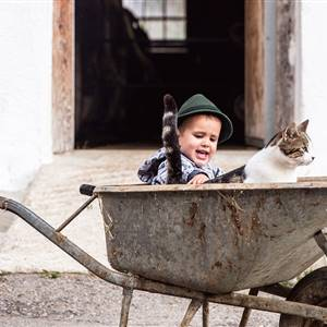 Child strokes a cat in a wheelbarrow