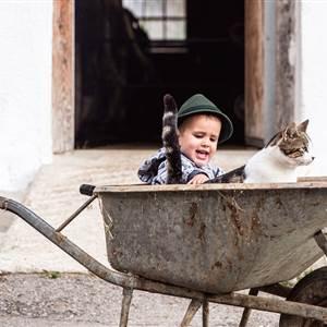 Kind streichelt eine Katze in einem Schubkarren