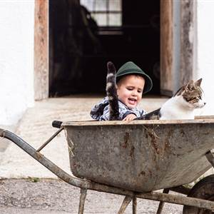 Child strokes a cat in a wheelbarrow