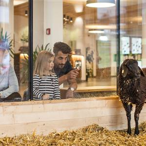 Family at the animals in the Almfamilyhotel Scherer