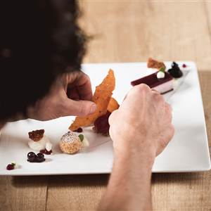 Preparation in a gourmet dish in detail