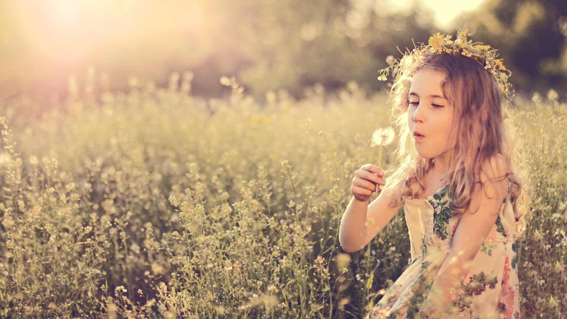 Girl with a wreath of flowers sitting in a meadow holding a dandelion